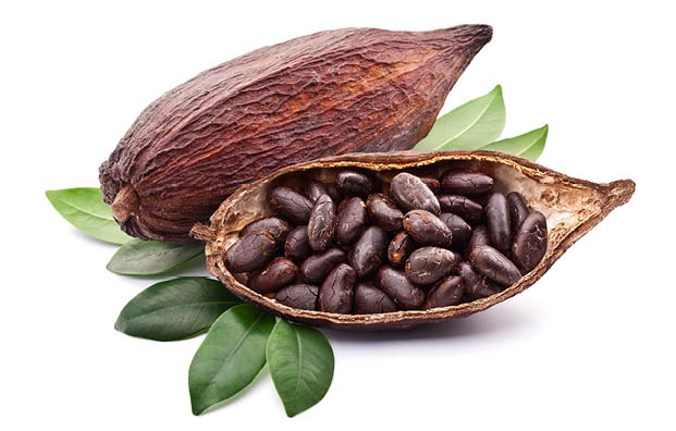Cacao – like chocolate but healthy