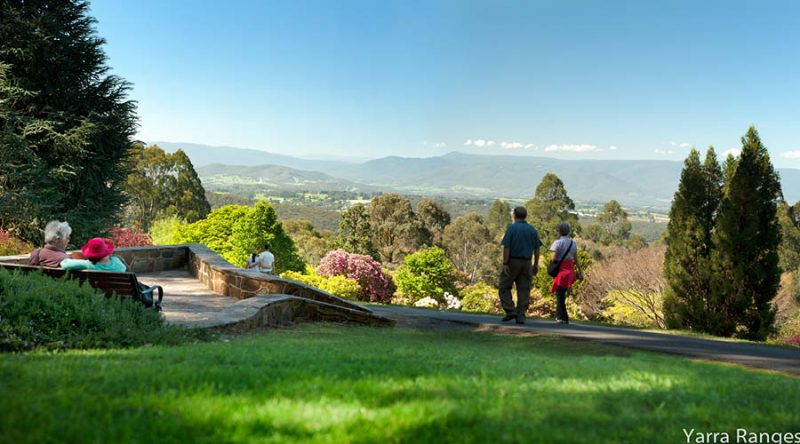 Welcome to the Yarra Valley & Dandenong Ranges