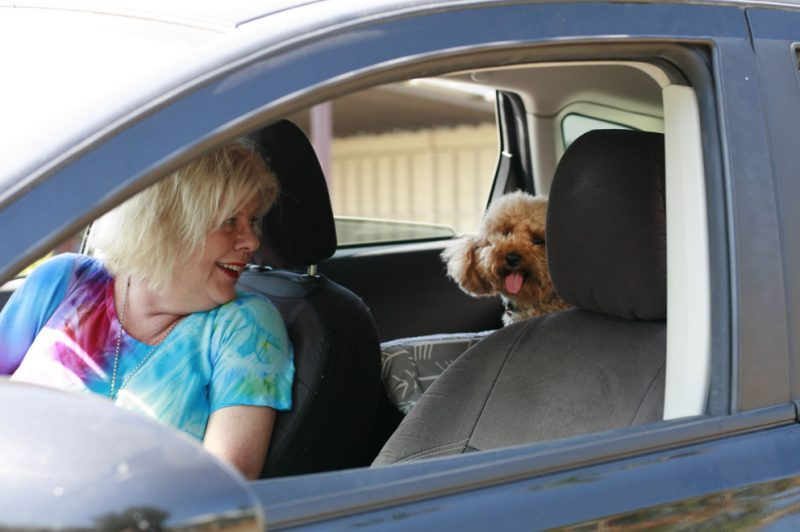 Baby Boomers Dominate Pet Sharing Economy