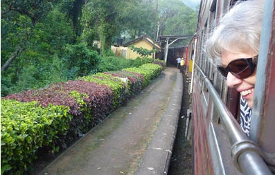 ninas-pathway-train